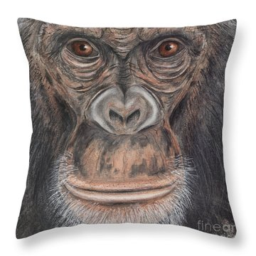 Throw Pillow featuring the painting Chimpanzee Face - Pan Troglodytes - Fine Art Print - Stock Illustration - Stock Image by Urft Valley Art
