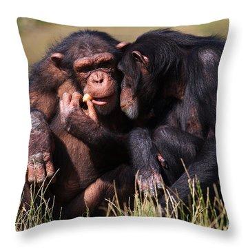 Throw Pillow featuring the photograph Chimpanzees Eating A Carrot by Nick  Biemans