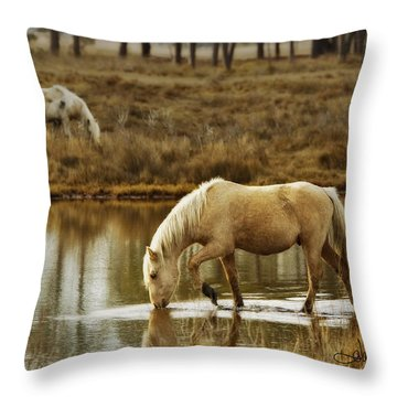 Throw Pillow featuring the photograph Chincoteague Gold by Joan Davis