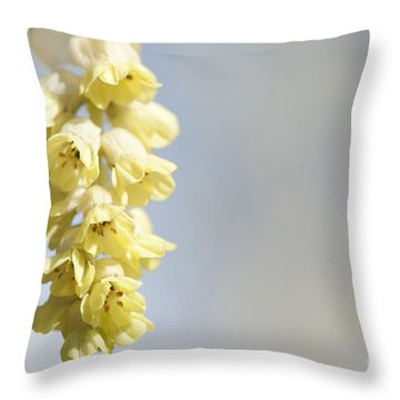Chinese Winter Hazel Throw Pillow by Anne Gilbert
