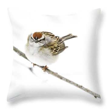 Chip Throw Pillow