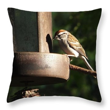 Chipping Sparrow On Feeder Throw Pillow