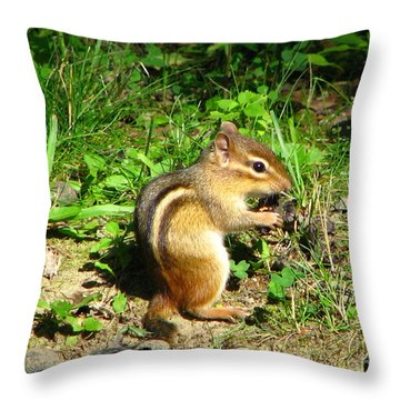 Chippy Throw Pillow