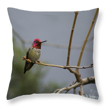 Throw Pillow featuring the photograph Chirpping Hummingbird by Debby Pueschel
