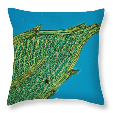 Chloroplasts On Moss Throw Pillow by Nuridsany et Perennou