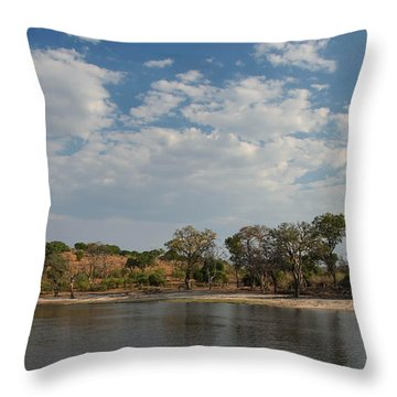 Chobe Reserve Throw Pillow