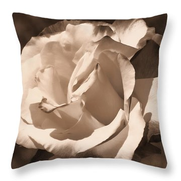 Chocolate Delight Throw Pillow by Athala Carole Bruckner