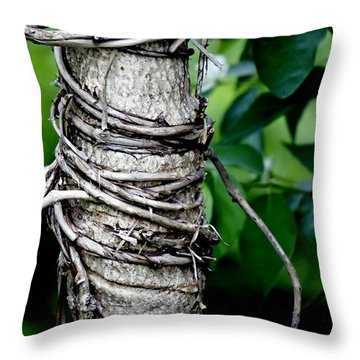 Throw Pillow featuring the photograph Choke by Lilliana Mendez