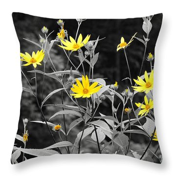 Chokeweeds Sc Throw Pillow by Mary Carol Story