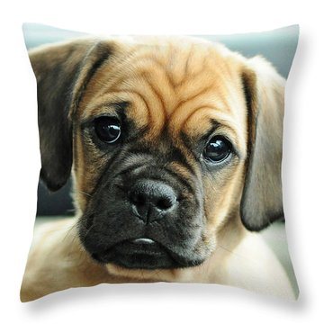 Chooch Throw Pillow