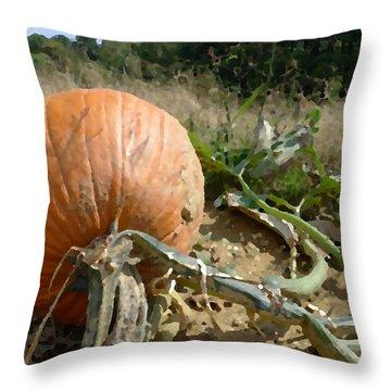Chosen Throw Pillow by Richard Reeve