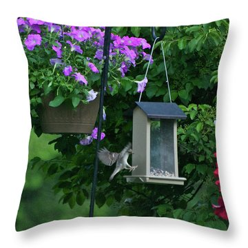 Throw Pillow featuring the photograph Chow Time For This Bird by Thomas Woolworth