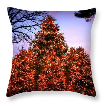 Throw Pillow featuring the photograph Christmas At The New York Botanical Garden by Aurelio Zucco