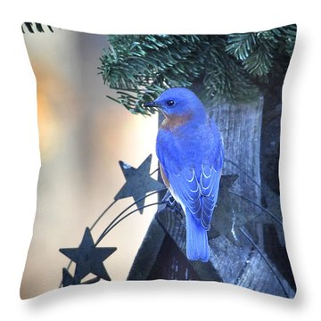 Christmas Bluebird Throw Pillow by Nava Thompson