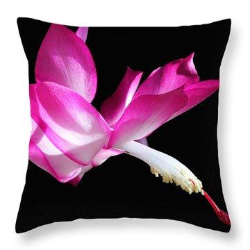 Christmas Cactus 2013 Throw Pillow