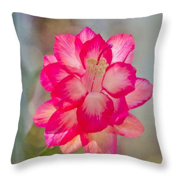 Christmas Cactus Bokeh Throw Pillow