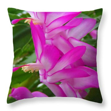 Christmas Cactus Flower Throw Pillow by Aimee L Maher Photography and Art Visit ALMGallerydotcom