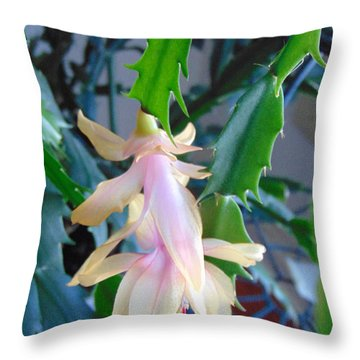 Christmas Cactus Flower Plant Throw Pillow by Charlotte Gray