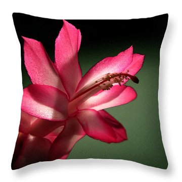 Throw Pillow featuring the photograph Christmas Cactus by Mary Bedy
