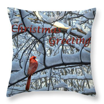 Throw Pillow featuring the photograph Christmas Card - Christmas Greeting by Larry Bishop