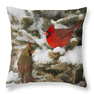 Christmas Card With Cardinals Throw Pillow