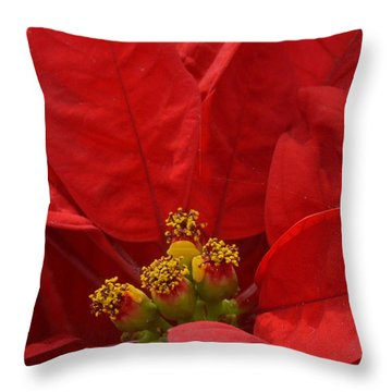 Christmas Cheer Throw Pillow by Tim Good