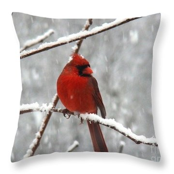 Christmas Eve Throw Pillow by Leea Baltes