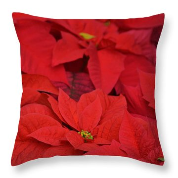 Christmas Fire Throw Pillow by Tim Good