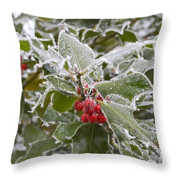Christmas Greetings Throw Pillow by Felicia Tica