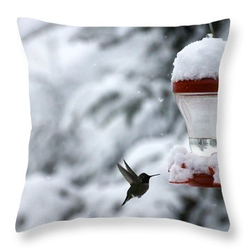 Christmas Hummingbird Throw Pillow