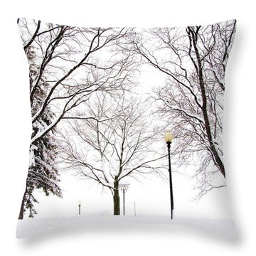 Throw Pillow featuring the photograph Christmas In Skaneateles by Margie Amberge
