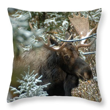 Christmas Moose Throw Pillow