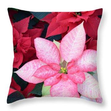 Christmas Pointsettia Throw Pillow by Kathleen Struckle