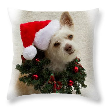 Throw Pillow featuring the photograph Christmas Puppy by Photography by Laura Lee