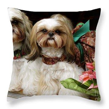 Throw Pillow featuring the photograph Christmas Shih Tzu's by Melinda Saminski