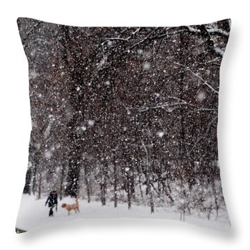 Throw Pillow featuring the photograph Christmas Walk by Jacqueline M Lewis