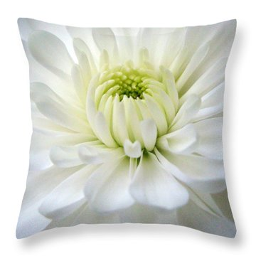 Chrysanthemum 1 Throw Pillow