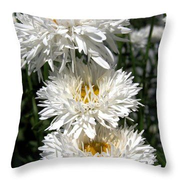 Chrysanthemum Named Crazy Daisy Throw Pillow by J McCombie