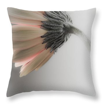 Chrysanthemum Petals 1 Throw Pillow