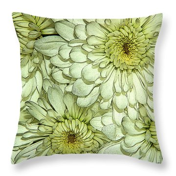 Throw Pillow featuring the photograph Chrysanthemum by Vickie Szumigala
