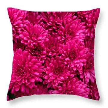 Chrysantheumums Throw Pillow