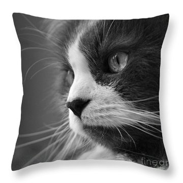 Chubbs Throw Pillow