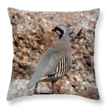Chukar Throw Pillow by Marty Fancy