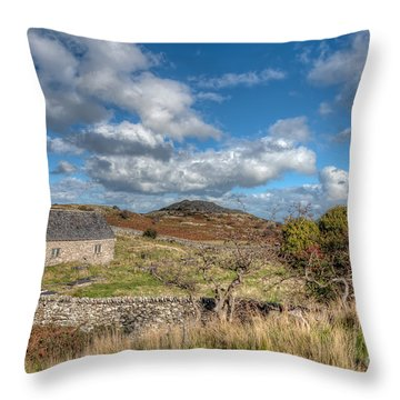 Church View Throw Pillow by Adrian Evans