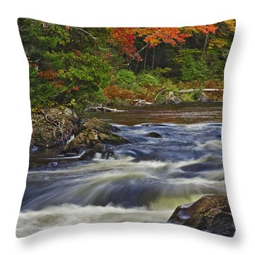 Chute Croches Throw Pillow