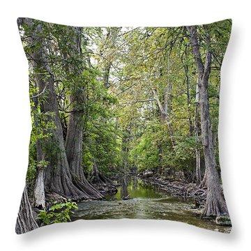 Cibolo Creek - 2 Throw Pillow