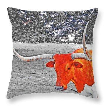 Cibolo Longhorn Throw Pillow
