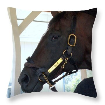 Cigar Racing Royalty Throw Pillow
