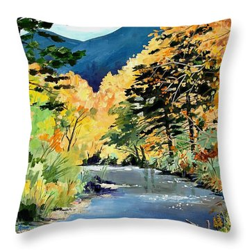 Cimarron Canyon Throw Pillow