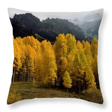 Cimarron Forks Throw Pillow